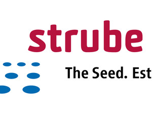 Strube Logo eng office