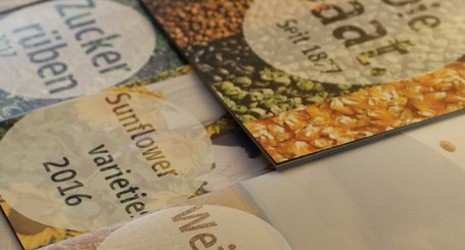 Strube seeds brochures and presentations
